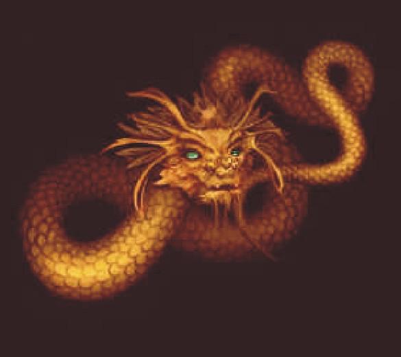 Slangen Draken